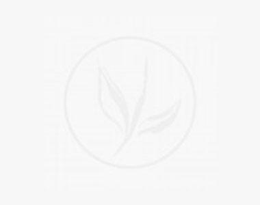 Bosso - Arbusti Contenitore 40-50 cm